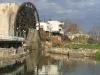 Suriye (Ocak 2006) 368.jpg