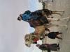 Suriye (Ocak 2006) 501.jpg